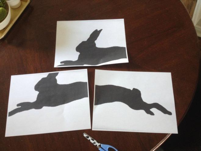 bunnypic8