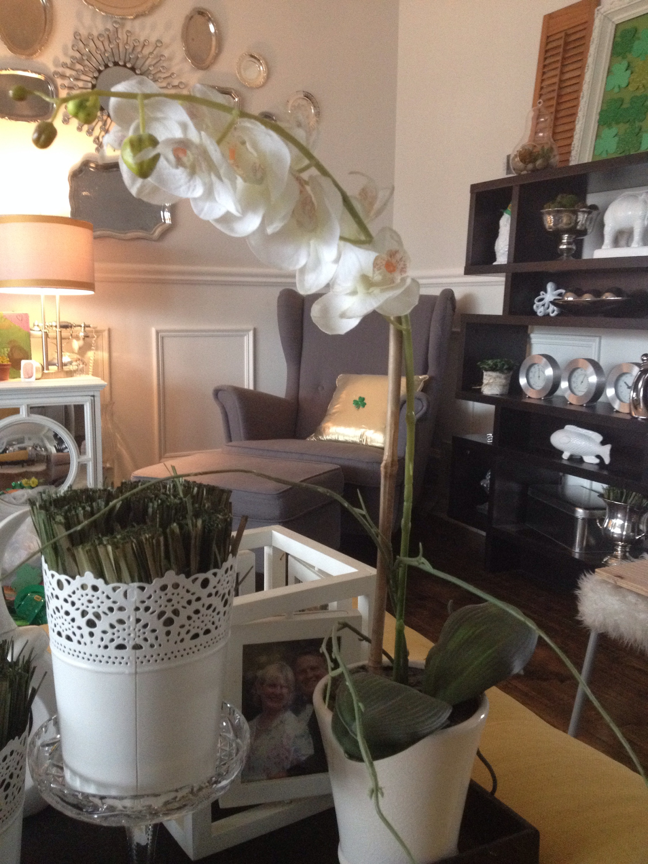 Living Room Ottoman I Love The Subtle Curve This Orchid Has And Its One Of My Only Decor Items That Doesnt Get Switched Out With Seasons