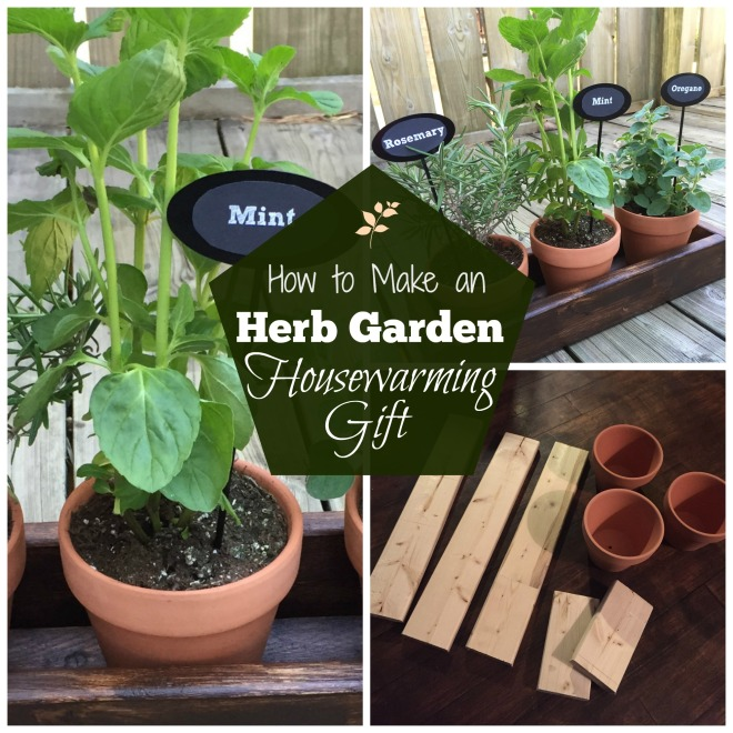 herb garden DIY